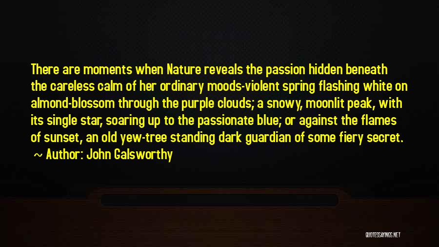 Almond Tree Quotes By John Galsworthy