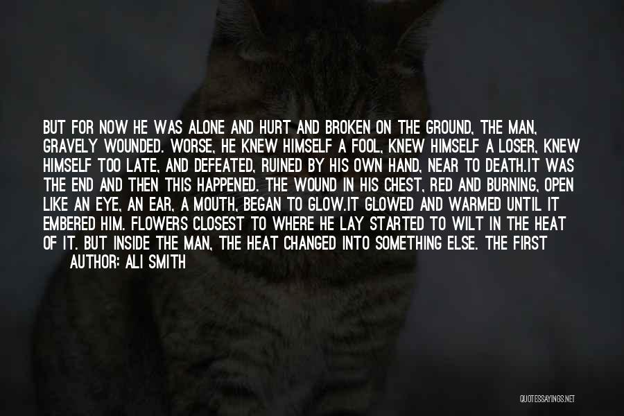 Alone And Hurt Quotes By Ali Smith