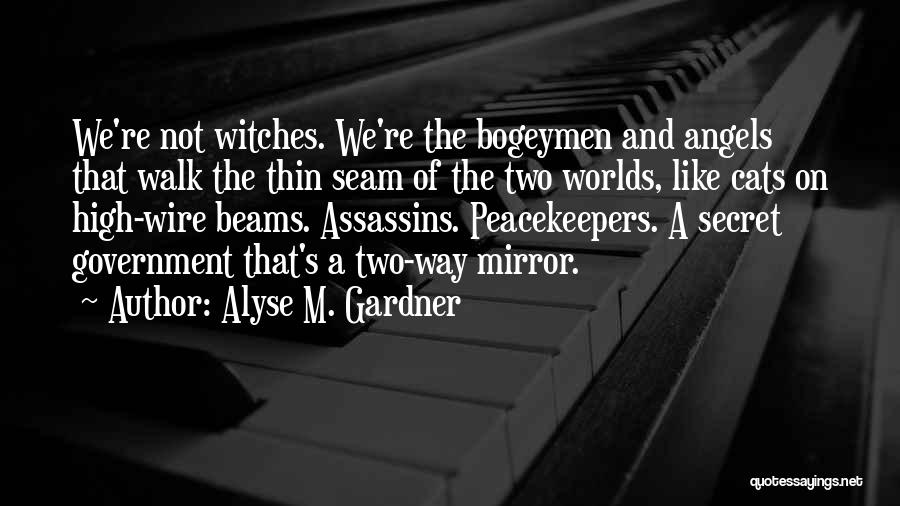 Alyse M. Gardner Quotes 2159711