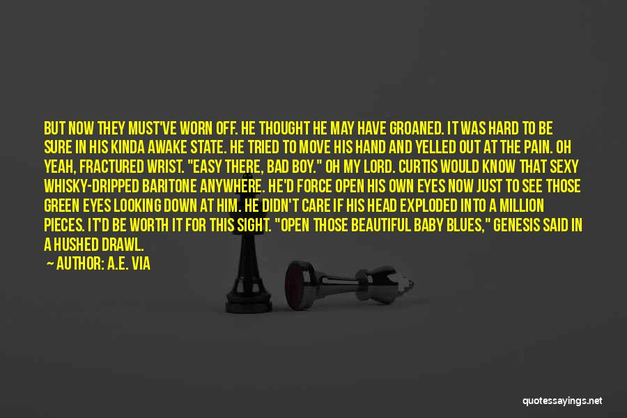Am A Bad Boy Quotes By A.E. Via