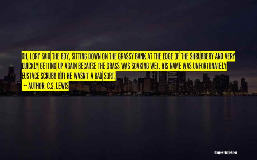 Am A Bad Boy Quotes By C.S. Lewis