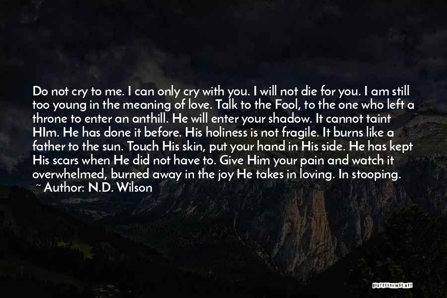 Am I The Only One Love Quotes By N.D. Wilson