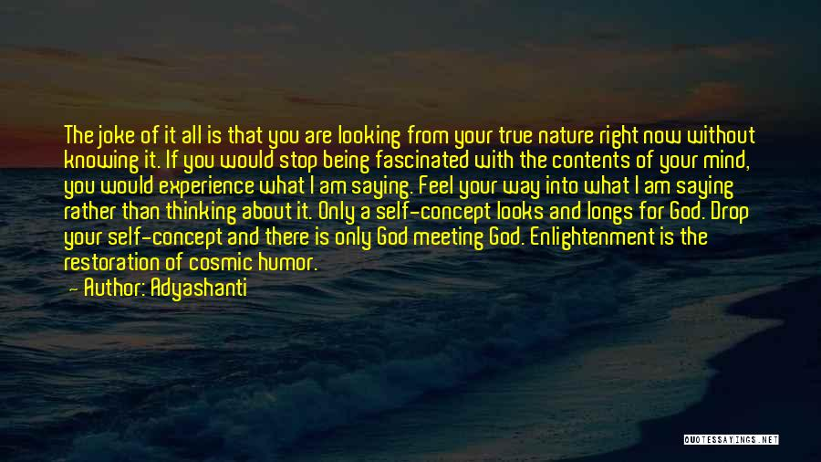 Am Looking For You Quotes By Adyashanti