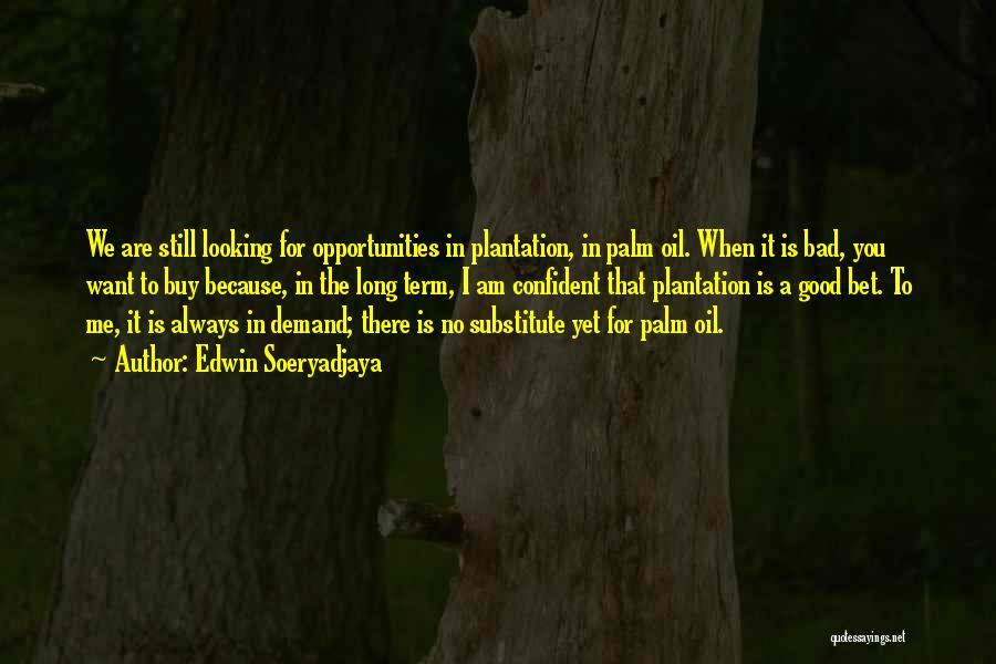 Am Looking For You Quotes By Edwin Soeryadjaya