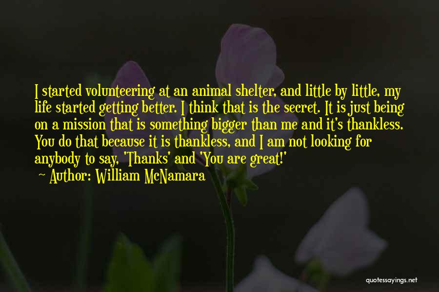 Am Looking For You Quotes By William McNamara