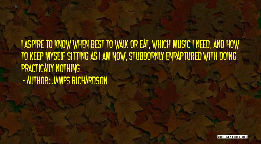 Am Sitting Quotes By James Richardson