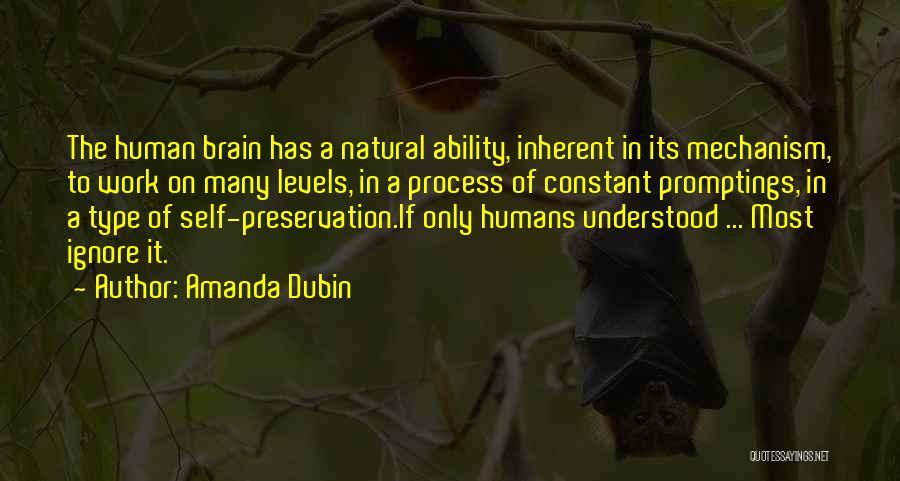 Amanda Dubin Quotes 1178965