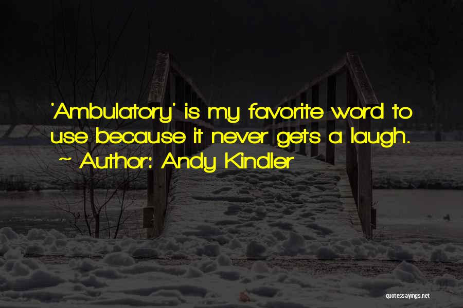 Ambulatory Quotes By Andy Kindler