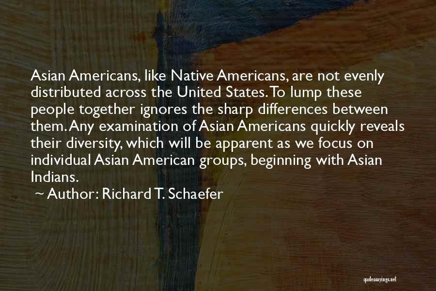 American Diversity Quotes By Richard T. Schaefer