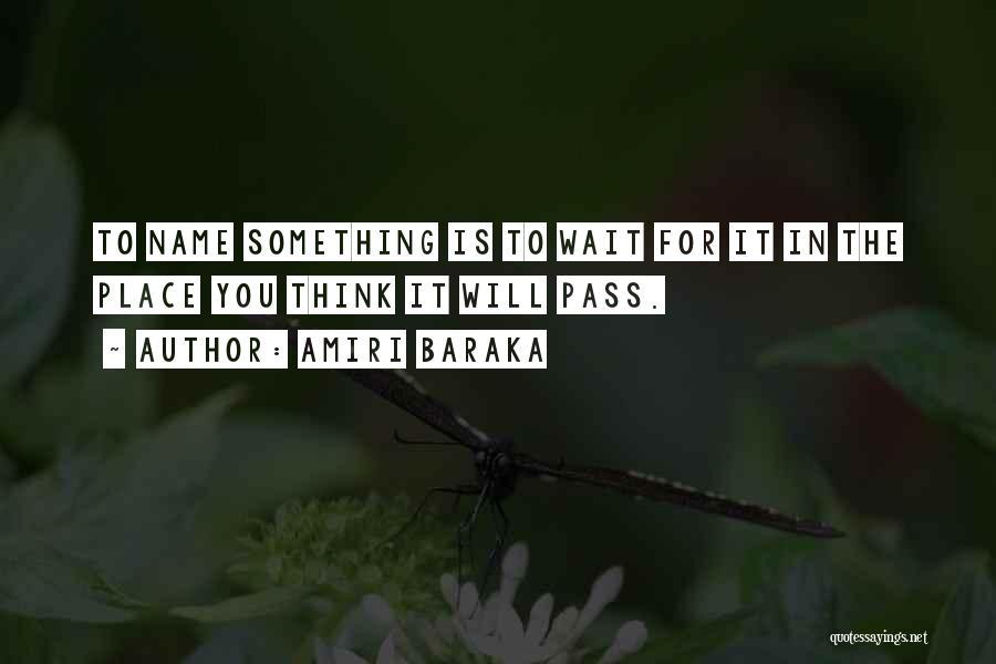 Amiri Baraka Quotes 1393767