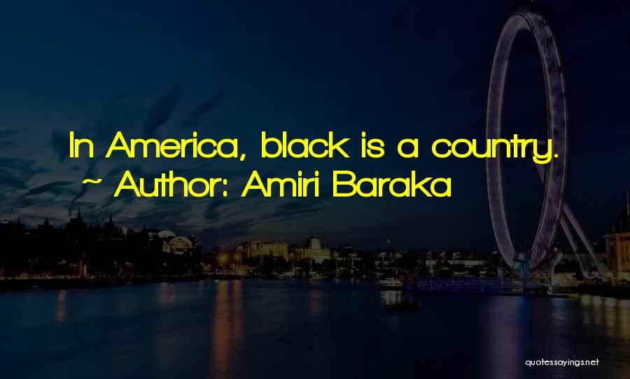 Amiri Baraka Quotes 2131556