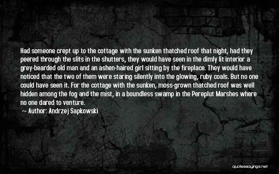 Among The Hidden Quotes By Andrzej Sapkowski