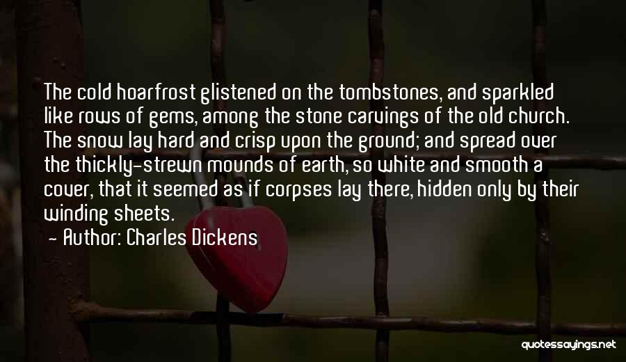 Among The Hidden Quotes By Charles Dickens