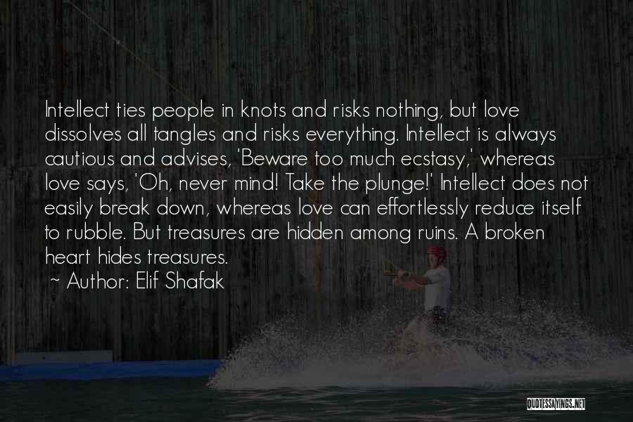 Among The Hidden Quotes By Elif Shafak