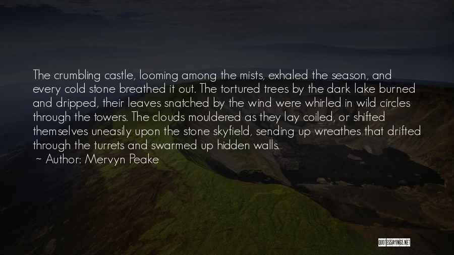 Among The Hidden Quotes By Mervyn Peake
