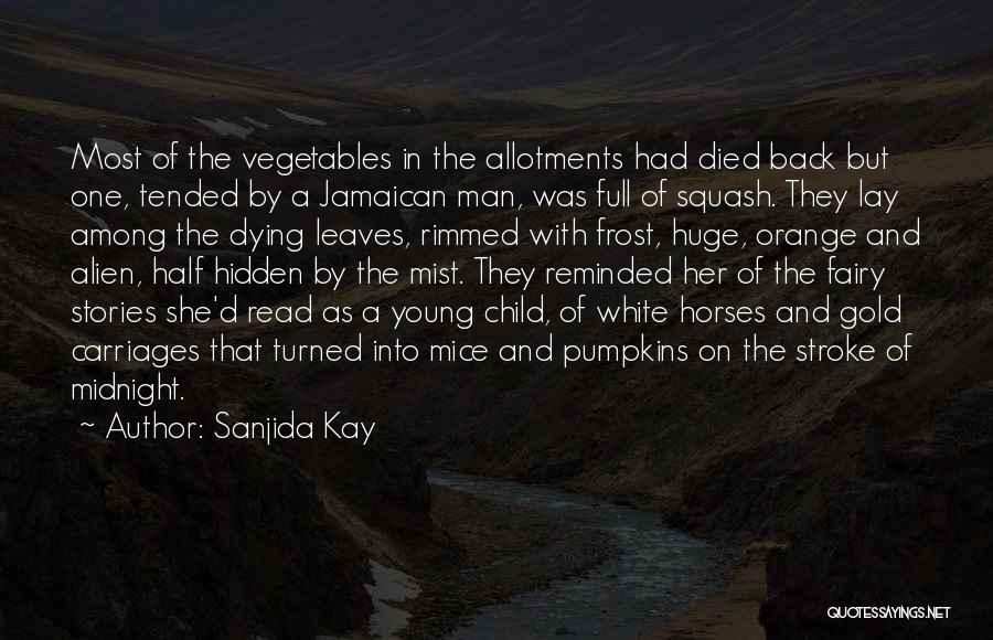 Among The Hidden Quotes By Sanjida Kay