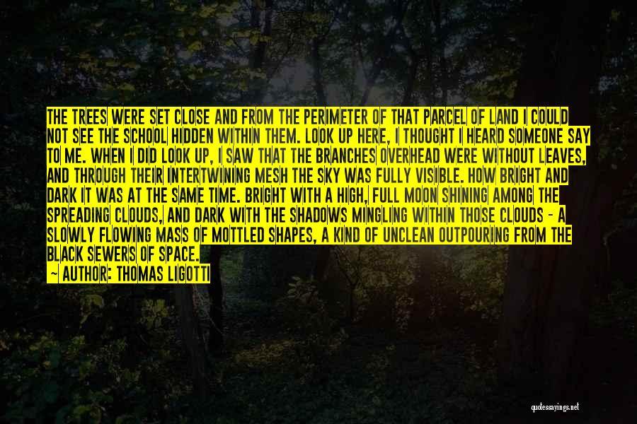 Among The Hidden Quotes By Thomas Ligotti