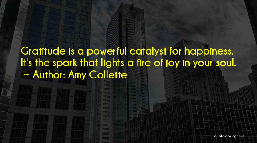 Amy Collette Quotes 202409