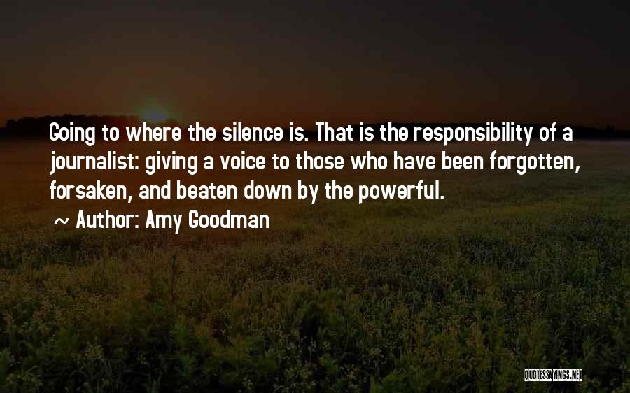 Amy Goodman Quotes 152103