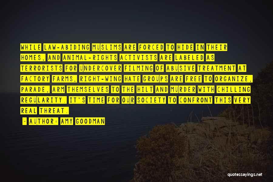 Amy Goodman Quotes 261612