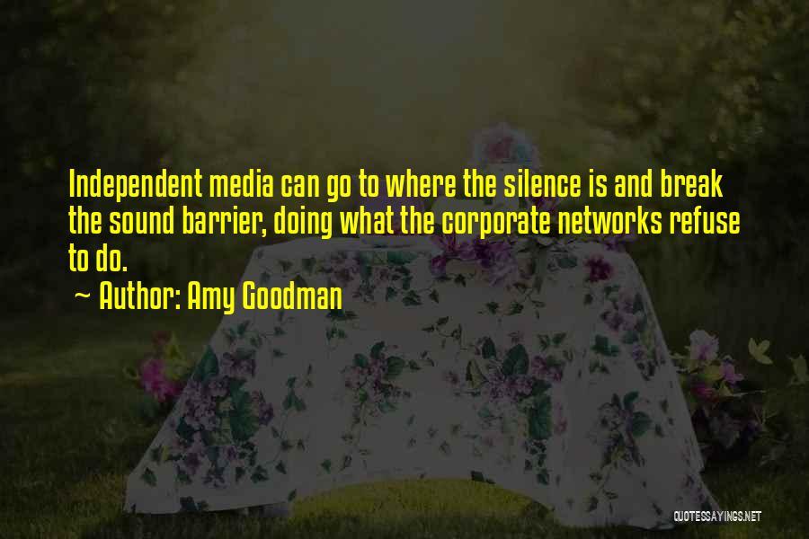 Amy Goodman Quotes 692708