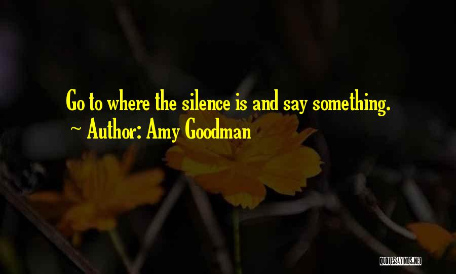 Amy Goodman Quotes 901096
