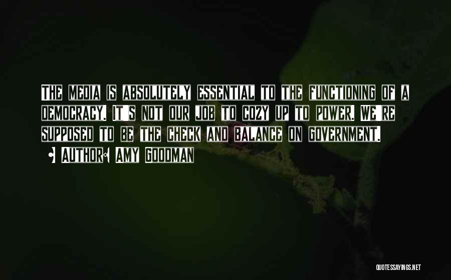 Amy Goodman Quotes 909231
