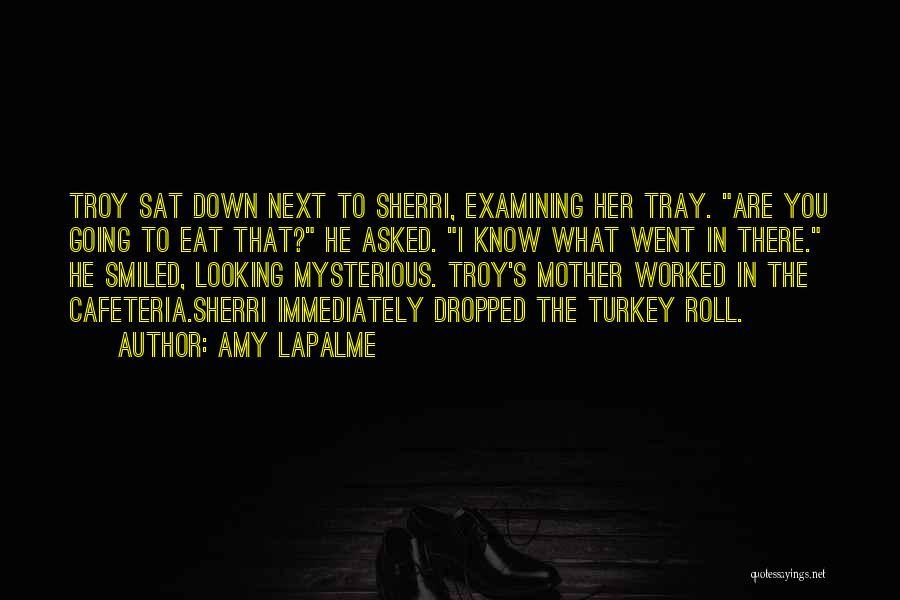 Amy LaPalme Quotes 739699