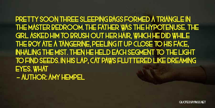 Amy Tangerine Quotes By Amy Hempel