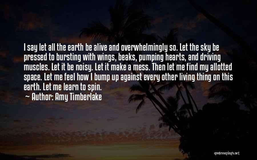 Amy Timberlake Quotes 1070797