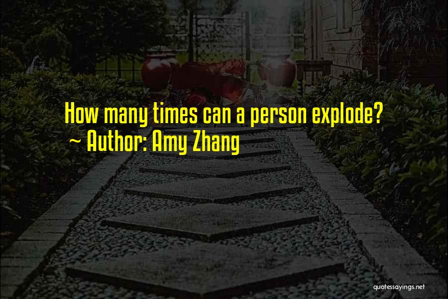 Amy Zhang Quotes 1058622