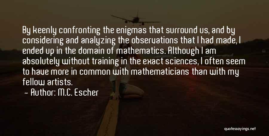 Analyzing Things Quotes By M.C. Escher