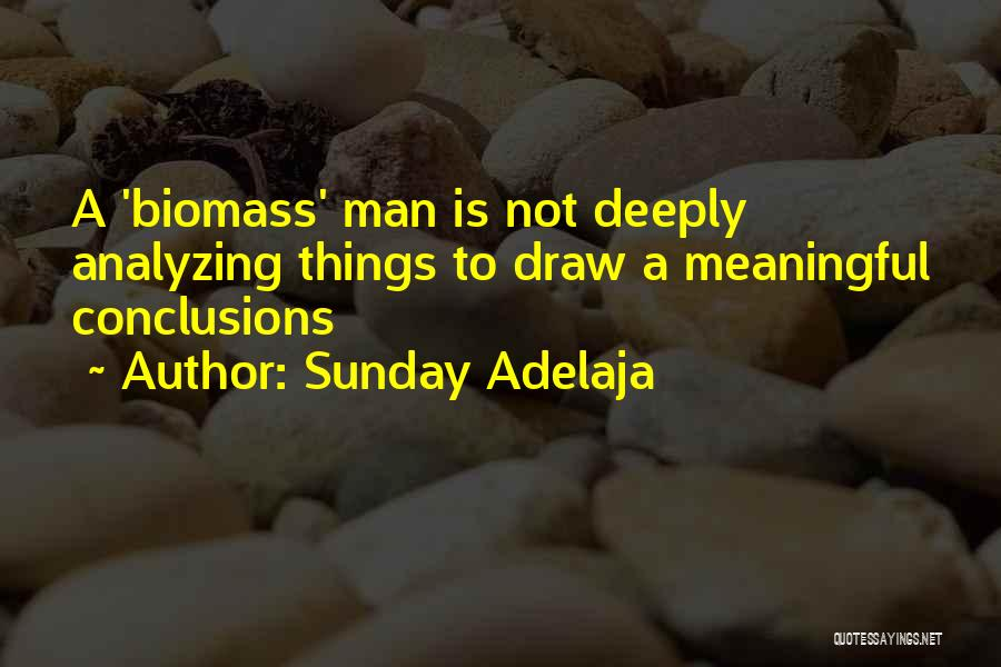 Analyzing Things Quotes By Sunday Adelaja