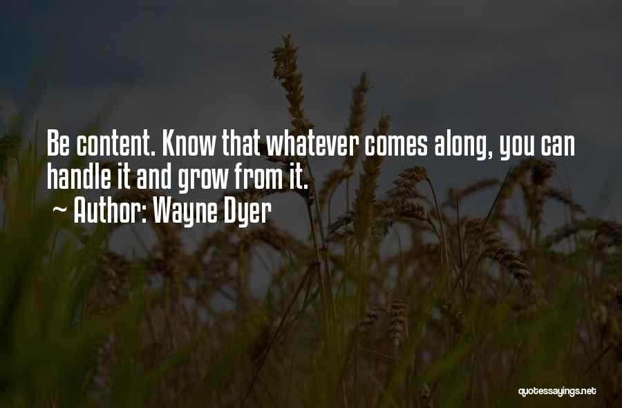 And Then Someone Comes Along Quotes By Wayne Dyer
