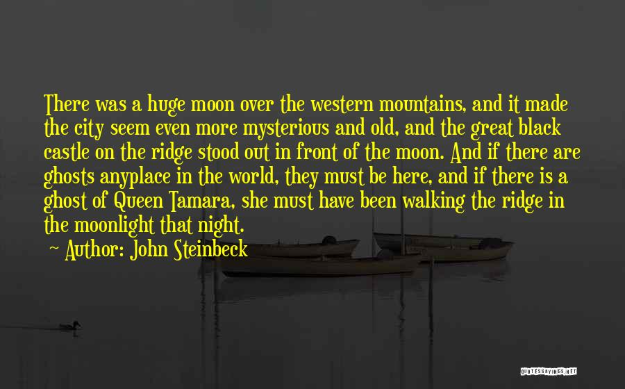 And There She Stood Quotes By John Steinbeck
