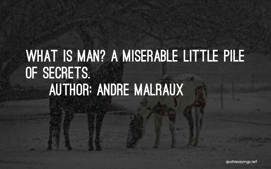 Andre Malraux Quotes 2137856