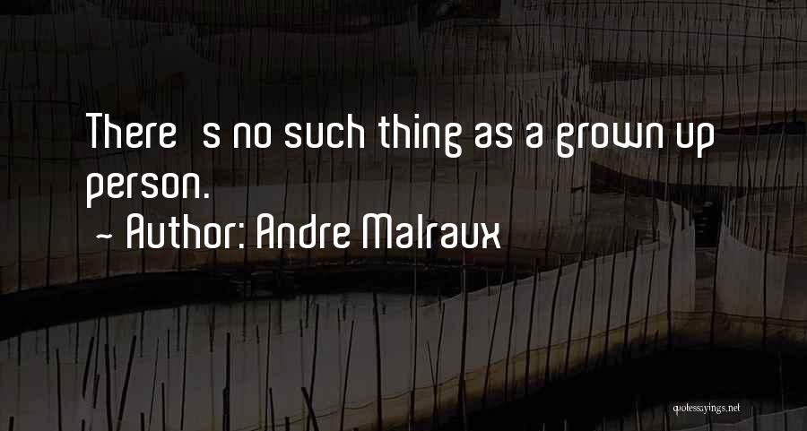 Andre Malraux Quotes 2235486