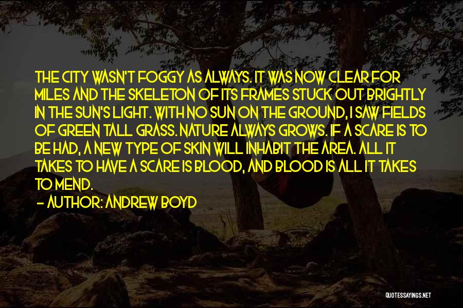 Andrew Boyd Quotes 2154140