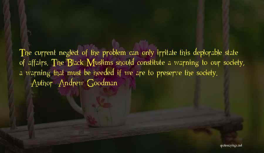 Andrew Goodman Quotes 1761733