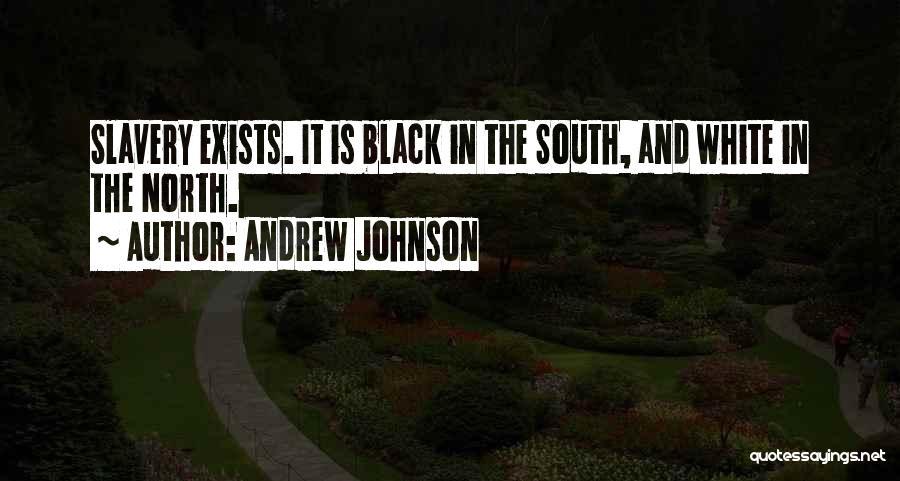 Andrew Johnson Quotes 1190705