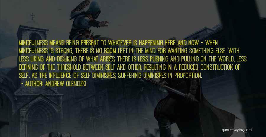 Andrew Olendzki Quotes 155843