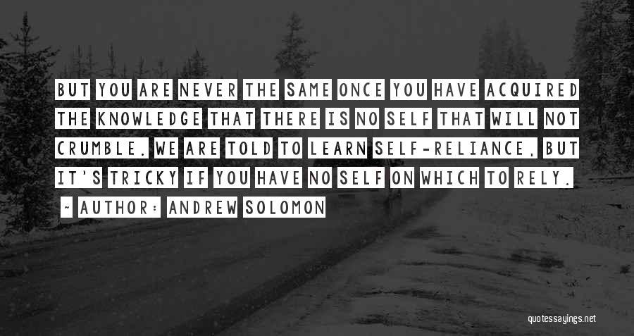 Andrew Solomon Quotes 396272