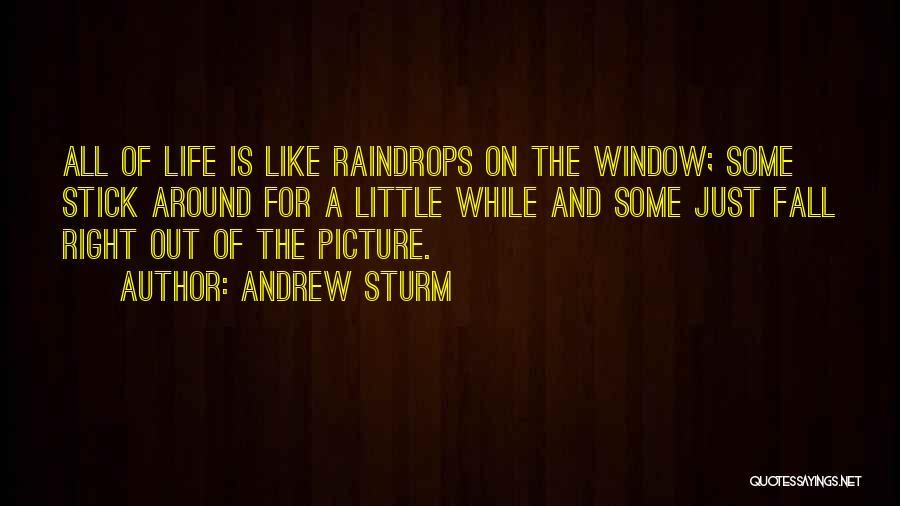 Andrew Sturm Quotes 106742