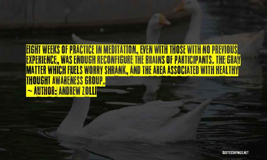 Andrew Zolli Quotes 696981