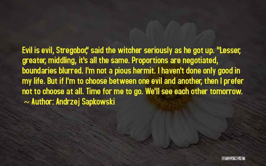 Andrzej Sapkowski Quotes 1483982