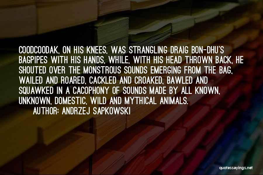 Andrzej Sapkowski Quotes 2046731