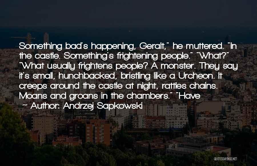Andrzej Sapkowski Quotes 339753