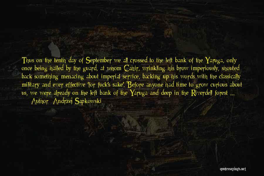 Andrzej Sapkowski Quotes 642622