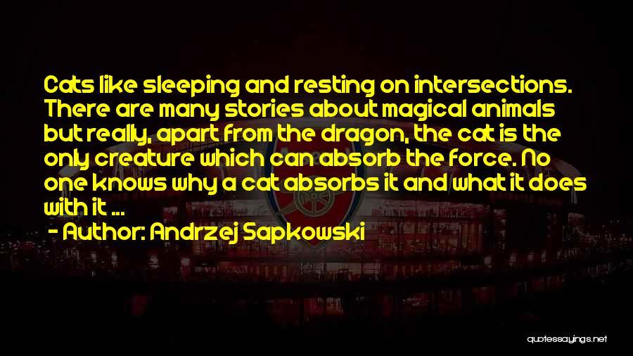 Andrzej Sapkowski Quotes 769830