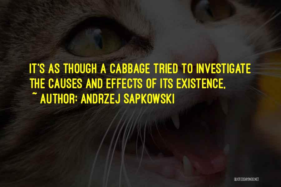 Andrzej Sapkowski Quotes 963240